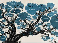 РС 176 Индоевропейские языки